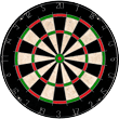 TG-Champion-Tournament-Bristle-Dartboard-